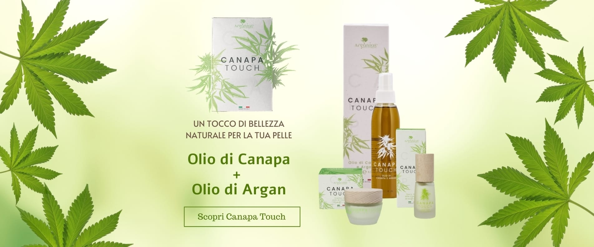Linea Canapa Touch