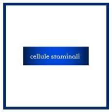 Linea Cellule Staminali